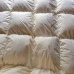 毛布いらずの羽毛布団